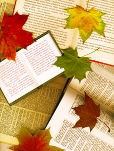 Sell-More-Books-this-Fall-228x300